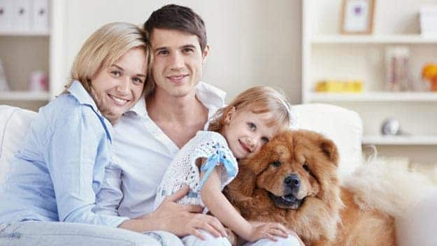 Wills & Trusts dog-young-family Direct Wills Berrylands